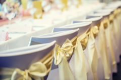 Wedding. Wedding chairs in row decorated with golden yellow colo Royalty Free Stock Photos