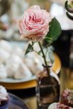 Wedding. Wedding details. Mr and Mrs. Delicious wedding reception candy bar table. Sweet holiday buffet with cupcakes. Wedding. Wedding details. fine art flowers stock images