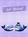 Wedding of whales Royalty Free Stock Photos