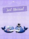 Wedding of whales Royalty Free Stock Photos