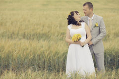 Wedding in wheat field Royalty Free Stock Photography
