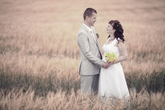 Wedding in wheat field Royalty Free Stock Image
