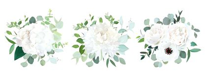 Wedding white flowers vector design bouquets. Hydrangea, rose, anemone, ranunculus, chrysanthemum,eucalyptus, greenery.Floral border composition.Trendy Royalty Free Stock Images