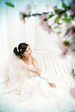 Wedding women portrait Royalty Free Stock Images