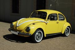 Wedding yellow beetle Stock Photos