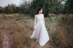 Wedding. Young beautiful bride with hairstyle and makeup posing in white dress. Soft sunset light summer portrait. Girl looking in camera Royalty Free Stock Images