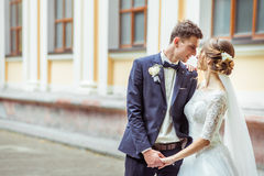 Wedding young couple Royalty Free Stock Image