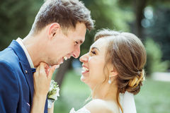 Wedding young couple Royalty Free Stock Photo