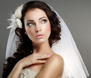 Wedding. Young Gentle Quiet Bride in Classic White Veil Looking Away Royalty Free Stock Photography