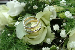 Weddingrings Immagine Stock