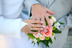 Weddings rings. A wedding etude is in colors, weddings rings Royalty Free Stock Photos