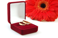 Weddings rings. On a background a red flower Royalty Free Stock Photography