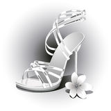 Weddings white shoes Royalty Free Stock Photos
