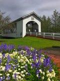 Weddle被遮盖的桥,俄勒冈,美国, 免版税库存图片