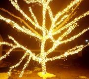 Wedergeboorte met Licht royalty-vrije stock afbeeldingen