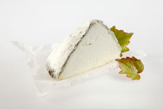 Wedge of Aged Cheese with Green Leaves Stock Photography