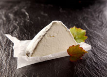 Wedge of Gourmet Cheese with Green Leaves Royalty Free Stock Photography