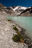 Wedgemount sjö Royaltyfri Foto