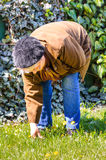 Weed cleaning garden old person Royalty Free Stock Photo