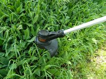 Weed Eater Cutting Green Tall Grass. Black and decker weed trimmer going to work on some vegetation stock photo