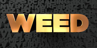 Weed - Gold text on black background - 3D rendered royalty free stock picture Stock Images
