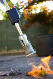 Weed Killer. A weed killing blow torch being used to incinerate a weed Stock Photo