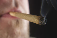 Weed Lit Joint. A weed joint that is still unlit stock photos
