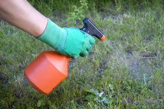 Weed spray Stock Image