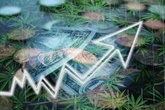 Weed Stocks Soaring Through Bull Market. Stock photo stock images