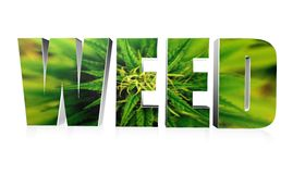 Weed Text Illustration Design Over White Royalty Free Stock Images