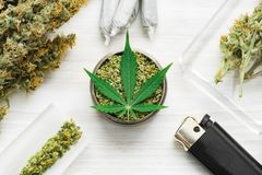 Weed on a white wooden background, grinder with crushed Joint and a weed Leaf of cannabis, buds of marijuana, unrolled top view. Sticky buds of marijuana flowers royalty free stock photos