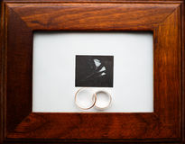 Weedding guld- cirklar i ram Fotografering för Bildbyråer