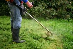 Weedeating ein überwucherter Rasen Lizenzfreies Stockfoto