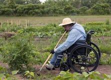 weeding сада Стоковое Изображение