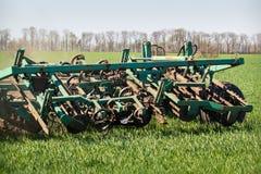 Weeding-máquina del primer detrás del tractor en campo de trigo verde Imágenes de archivo libres de regalías
