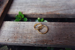 Weeding ring Royalty Free Stock Image