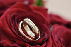Weeding rings Stock Image