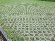 Weeds in cobble stones Stock Image