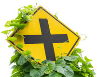 Weeds traffic signs. Vine leaves, weeds grew up and choked intersection traffic signs Stock Photography