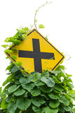 Weeds traffic signs Stock Images