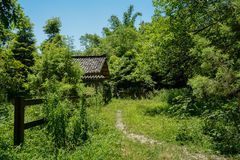 Weedy trail before fenced Chinese traditional building on sunny Royalty Free Stock Images
