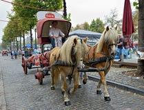 Week-end belge 2014 de bière Photos stock
