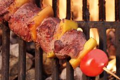 Weekend BBQ Meat Beef  Kebab Or Kabob On Flaming Grill Royalty Free Stock Images