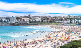 Weekend at Bondi Beach Royalty Free Stock Images