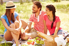 Weekend picnic Royalty Free Stock Images