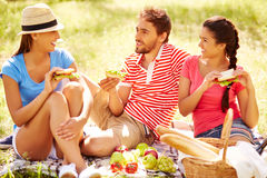 Weekend picnic Royalty Free Stock Photos