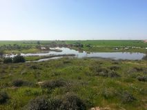 A weekend trip to the Fore Forest. A nature hike in the reserve on the way to Be`er Sheva, the Pura Nature Reserve Royalty Free Stock Photo