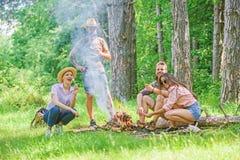 Weekend w lasowych korzyściach Prażaków marshmallows popularna grupowa aktywność wokoło ogniska Firma przyjaciele przygotowywają  zdjęcie royalty free
