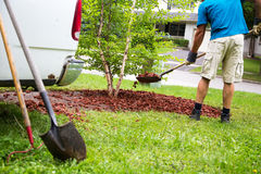Weekend yard work. Shoveling red lava rock into a residential garden around a small tree Stock Photography