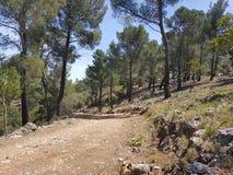 Weekendowa natury wycieczka w Mallorca lifeonanisland fotografia stock